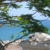 Titta vad gott kissemissen har det på strandpromenaden på Gran Canaria. Jag kunde inte låta bli att ta kort på den.